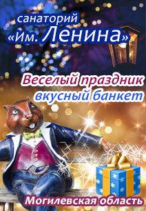 санаторий им Ленина самая низкая цена город Бобруйск санатории Беларуси оздоровление в Беларуси Новый год 2018
