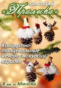 санаторий Пралеска Минская область санатории Беларуси Лечение в Беларуси Новый год 2018