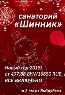 санаторий Шинник санатории Беларуси отдых в Беларуси Новый год 2018
