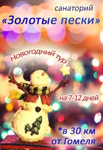 Санаторий Золотые пески санатории Беларуси отдых в Беларуси Новый год 2018
