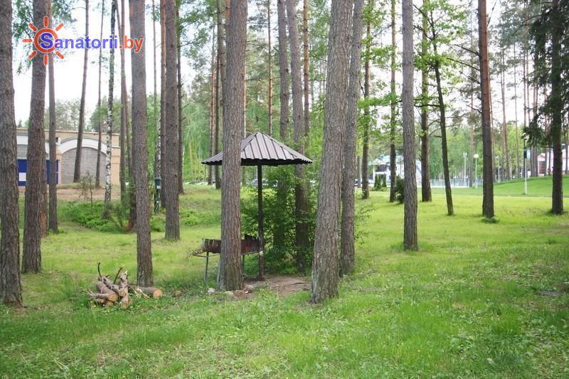 Санатории Белоруссии Беларуси - санаторий Озёрный - Площадка для шашлыков
