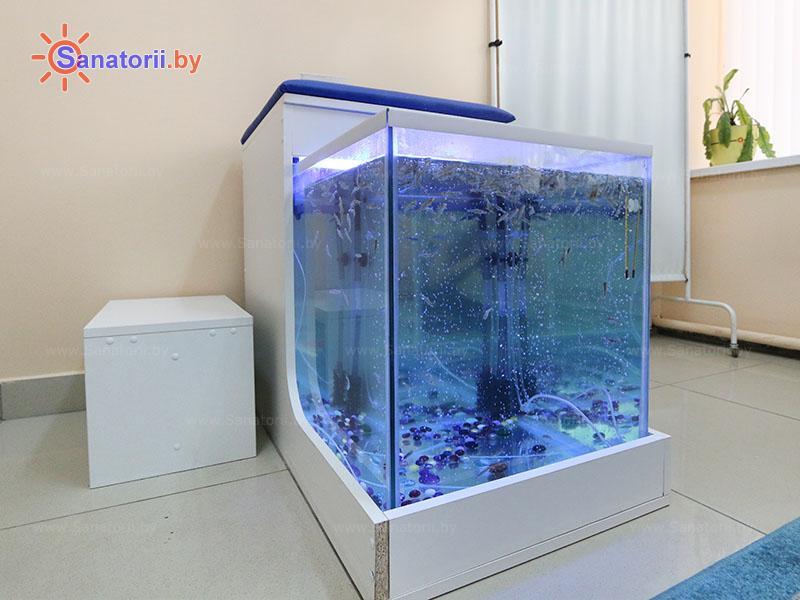 Санатории Белоруссии Беларуси - санаторий Чёнки - Фиш-SPA