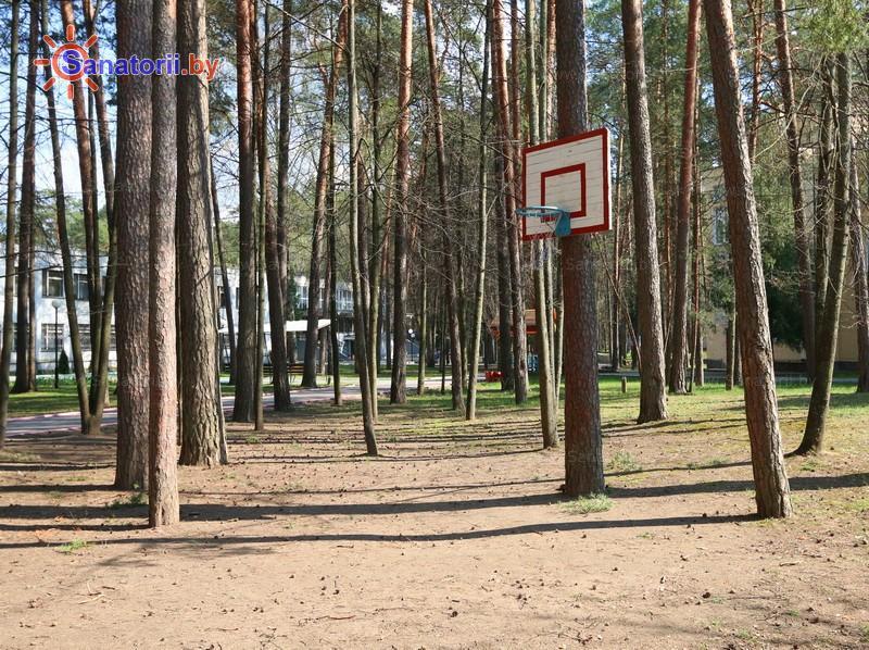 Санатории Белоруссии Беларуси - санаторий Лётцы - Спортплощадка