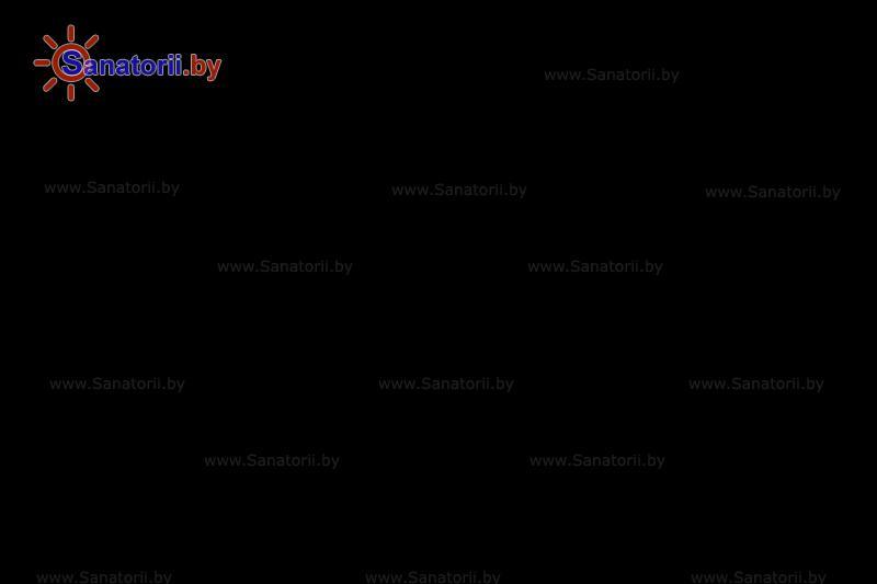 Санатории Белоруссии Беларуси - санаторий Лётцы - Детская площадка