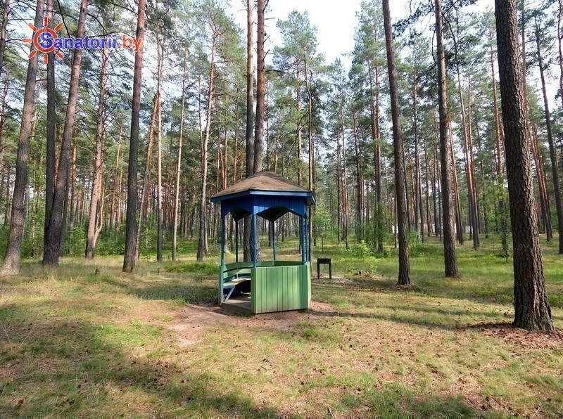 Санатории Белоруссии Беларуси - оздоровительный комплекс Белино - Площадка для шашлыков