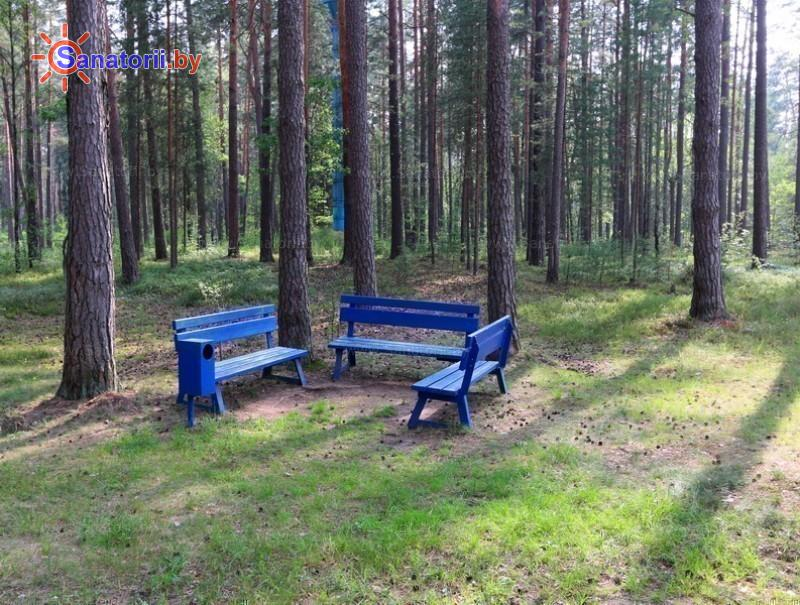 Санатории Белоруссии Беларуси - оздоровительный комплекс Белино - Территория и природа