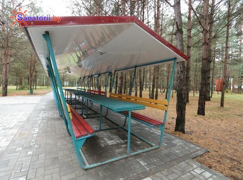 Санатории Белоруссии Беларуси - оздоровительный комплекс Сосновый бор - Площадка для шашлыков
