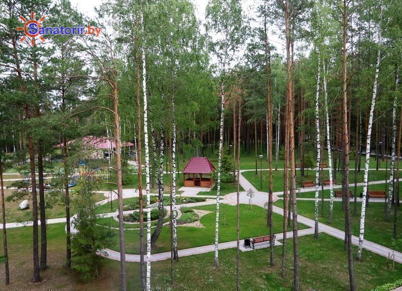 Санатории Белоруссии Беларуси - санаторий Энергетик - Территория и природа