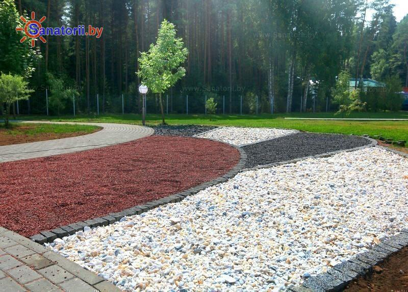 Санатории Белоруссии Беларуси - санаторий Приозерный - Тропа здоровья