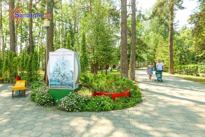 Санатории Белоруссии Беларуси - санаторий Шинник - Территория и природа