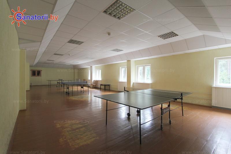 Санатории Белоруссии Беларуси - оздоровительный комплекс БАТЭ - Теннис настольный