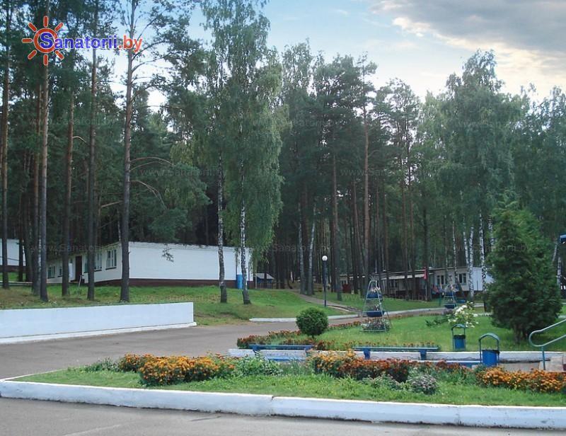 Санатории Белоруссии Беларуси - оздоровительный центр Дудинка - Территория и природа