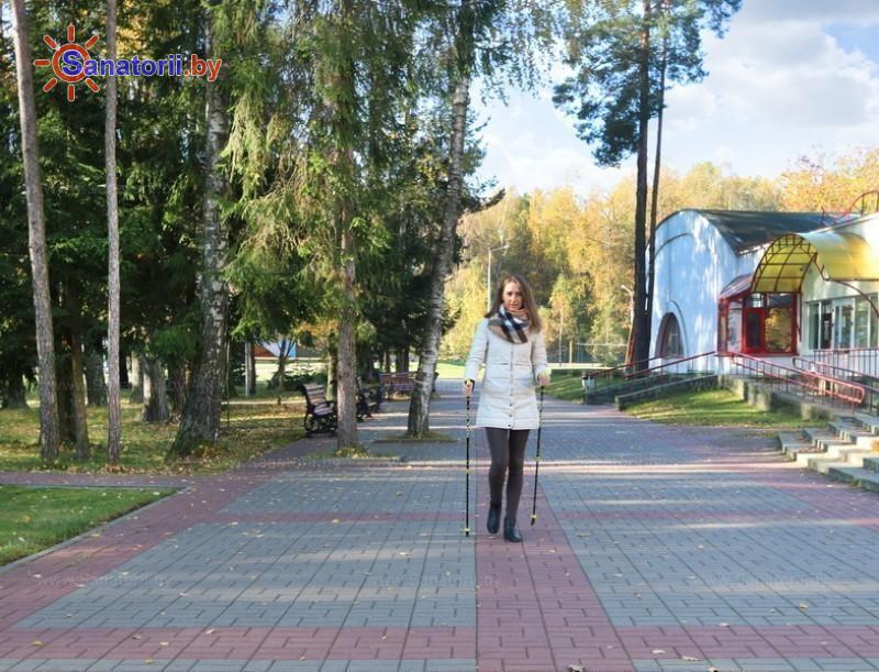 Санатории Белоруссии Беларуси - оздоровительный комплекс Ракета - Ходьба скандинавская