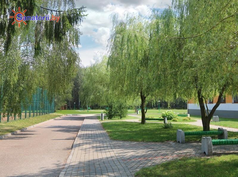 Санатории Белоруссии Беларуси - санаторий Белая вежа - Территория и природа