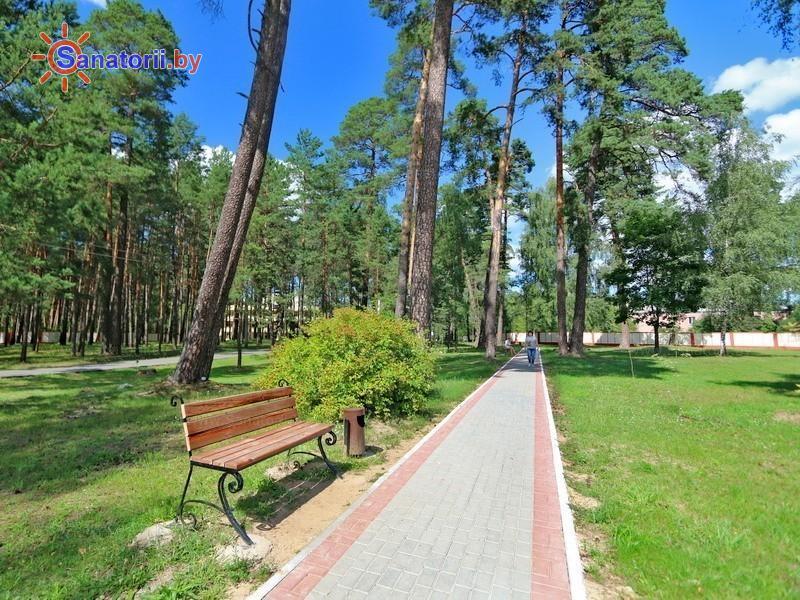 Санатории Белоруссии Беларуси - санаторий Березина-Борисов - Территория и природа