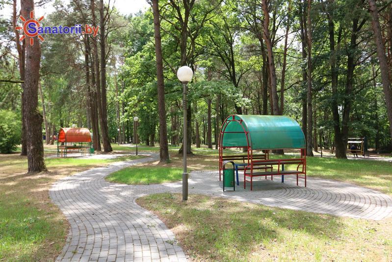 Санатории Белоруссии Беларуси - санаторий Жемчужина - Территория и природа