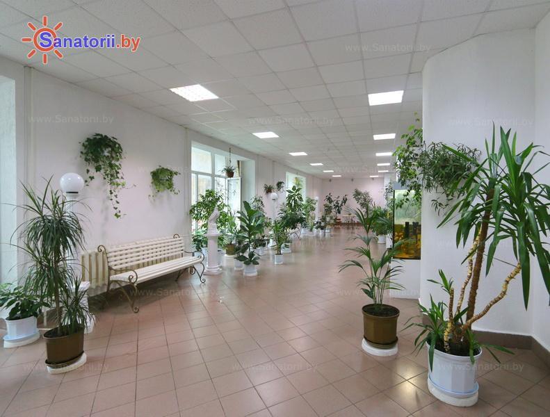 Санатории Белоруссии Беларуси - ДРОЦ Колос - Зимний сад