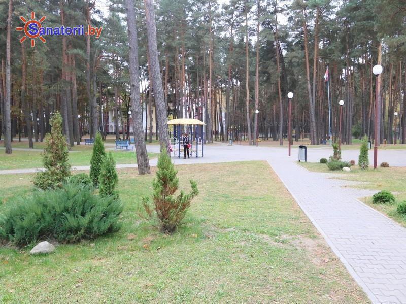 Санатории Белоруссии Беларуси - ДРОЦ Колос - Территория и природа