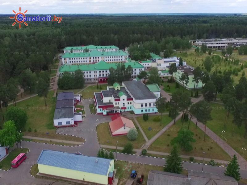 Санатории Белоруссии Беларуси - ДРОЦ Жемчужина - Территория и природа