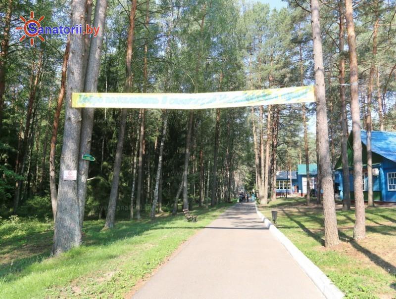 Санатории Белоруссии Беларуси - детский санаторий Налибокская пуща - Территория и природа
