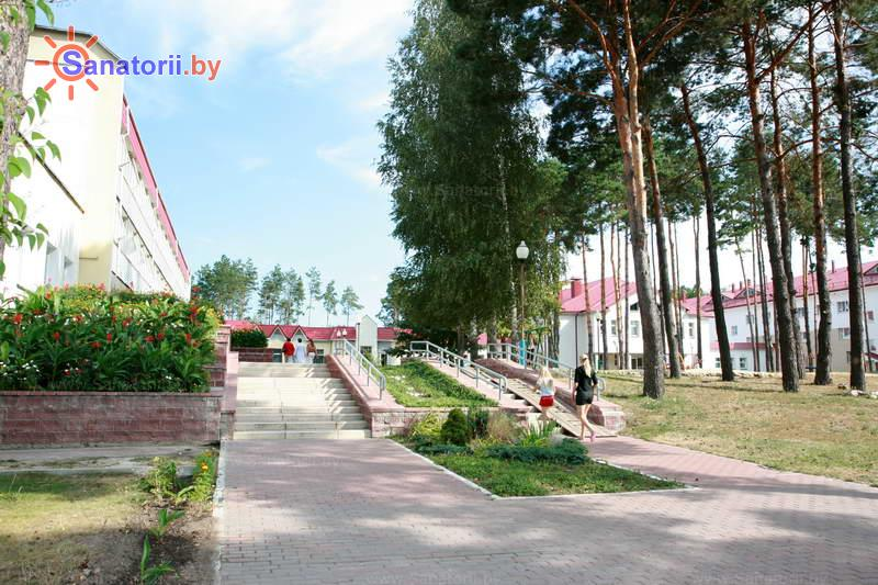 Санатории Белоруссии Беларуси - ДРОЦ Птичь - Территория и природа