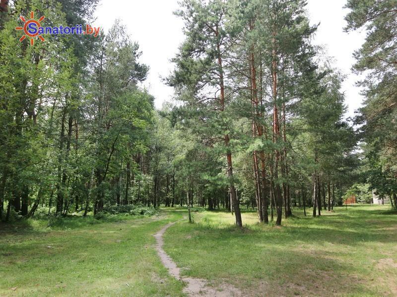Санатории Белоруссии Беларуси - ДРОЦ Свитанак - Территория и природа