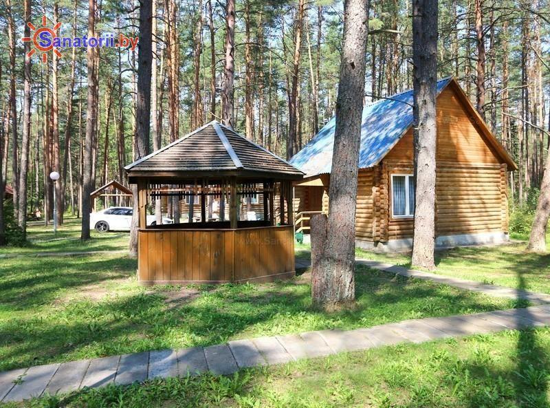 Санатории Белоруссии Беларуси - санаторий Нарочанка - Площадка для шашлыков