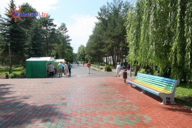 Санатории Белоруссии Беларуси - санаторий Берестье - Территория и природа
