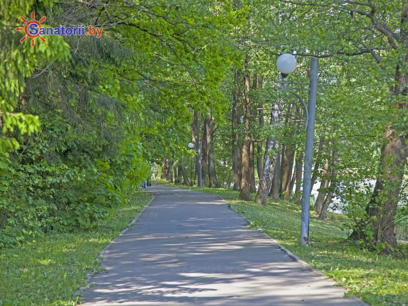 Санатории Белоруссии Беларуси - РНПЦ медэкспертизы и реабилитации Городище - Территория и природа