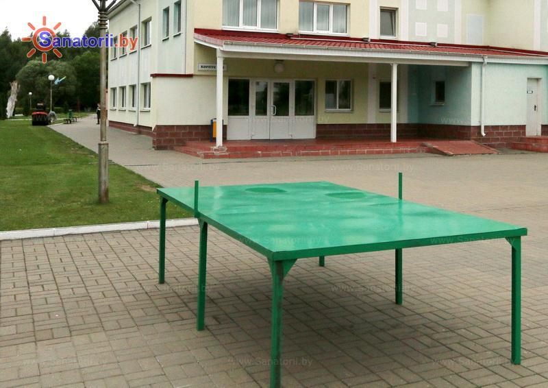 Санатории Белоруссии Беларуси - ДРОЦ Лесная поляна - Теннис настольный