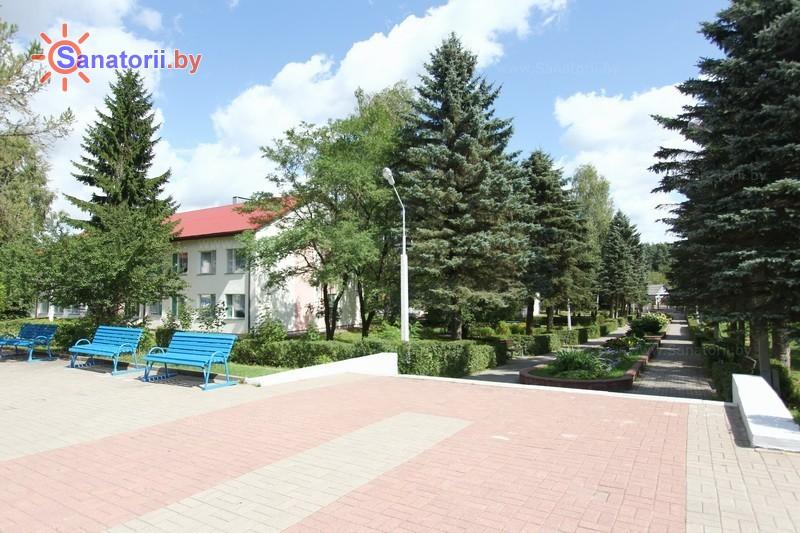 Санатории Белоруссии Беларуси - санаторий Зеленый бор - Территория и природа