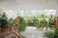 санаторий Магистральный - Зимний сад