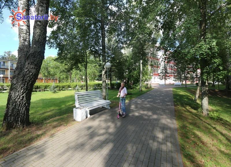 Санатории Белоруссии Беларуси - санаторий Нарочанский берег - Территория и природа