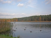 санаторий Поречье - Водоём