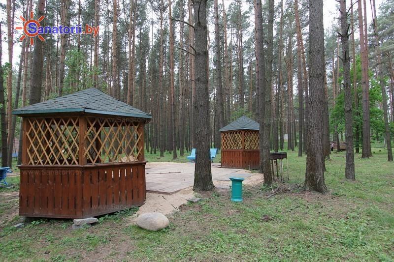 Санатории Белоруссии Беларуси - санаторий Пралеска - Площадка для шашлыков