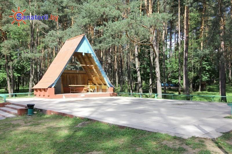 Санатории Белоруссии Беларуси - санаторий Пралеска - Танцплощадка летняя