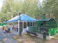health resort Pridneprovsky - Barbeque site