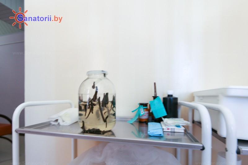 Санатории Белоруссии Беларуси - санаторий Приднепровский - Гирудотерапия (пиявки)