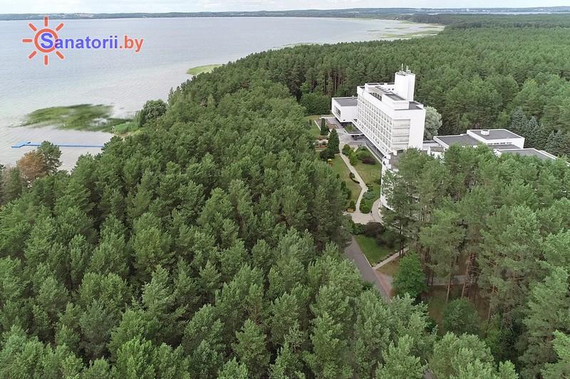 Санаторыі Беларусі - санаторый Сосны - Тэрыторыя