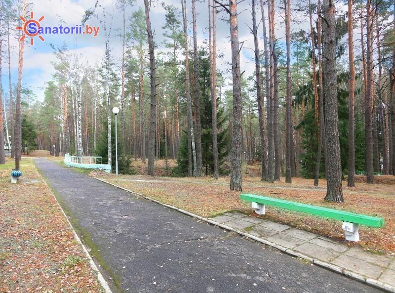 Санатории Белоруссии Беларуси - санаторий Березина - Территория и природа
