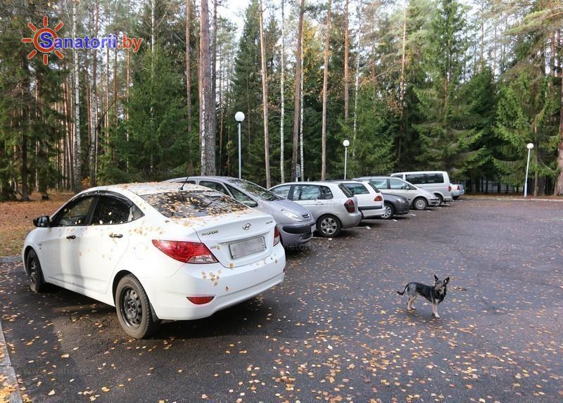 Санатории Белоруссии Беларуси - санаторий Березина - Парковка