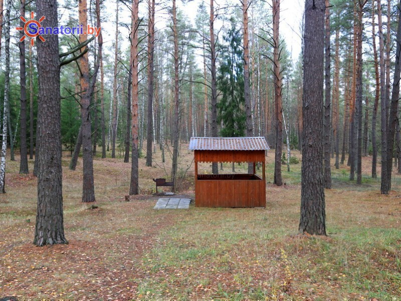 Санатории Белоруссии Беларуси - санаторий Березина - Площадка для шашлыков