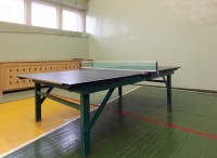 health resort Praleska Grodno - Table tennis (Ping-pong)