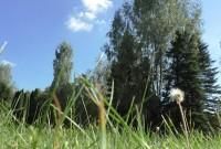 Свитанок - Территория и природа