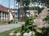 санатория Спутник - Ждановичи - Территория и природа