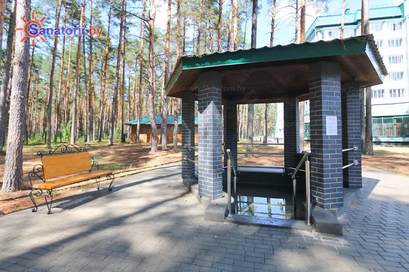 Санатории Белоруссии Беларуси - санаторий Спутник - Тропа здоровья