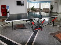 health resort Zheleznodorozhnik - Table tennis (Ping-pong)