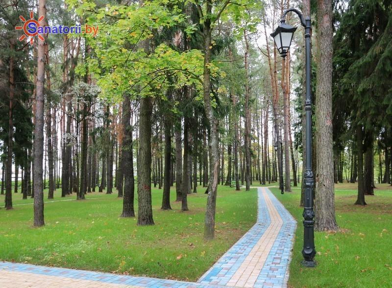Санатории Белоруссии Беларуси - санаторий Железнодорожник - Территория и природа