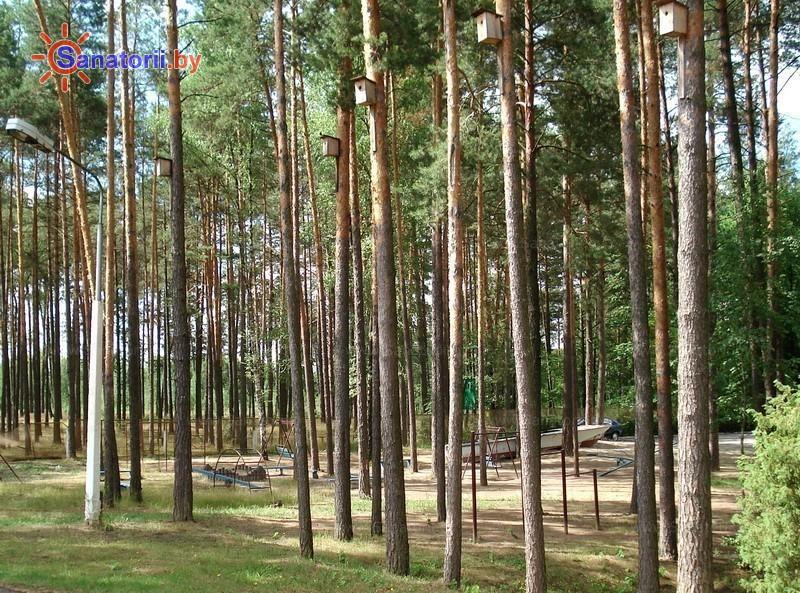 Санатории Белоруссии Беларуси - санаторий Свитанок - Территория и природа