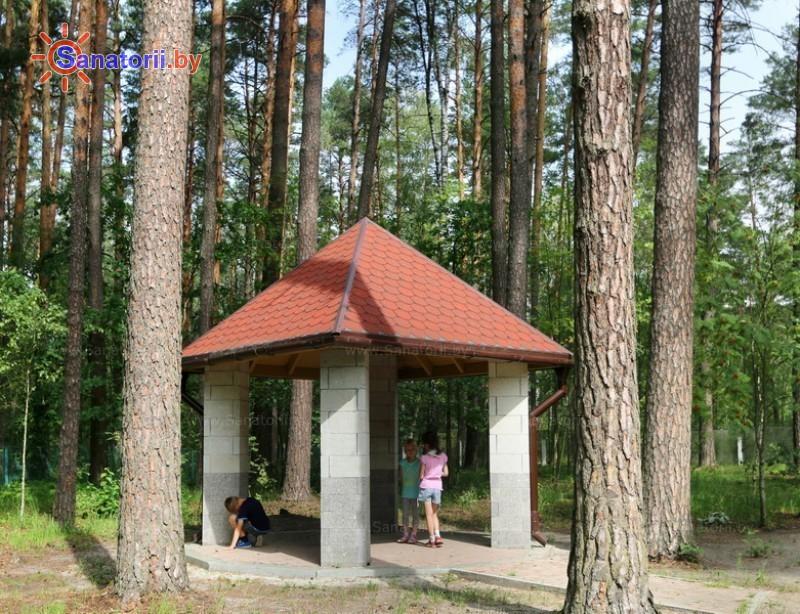 Санатории Белоруссии Беларуси - санаторий Свитанок - Площадка для шашлыков